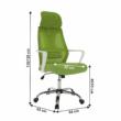 Irodai szék, zöld/fehér, TAXIS 1