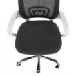 Irodai szék, szürke/fehér, SANAZ TYP 2 3