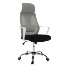 Irodai szék, szürke/fekete/fehér, TAXIS